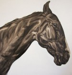 Painting by Abigail Reed. Black Horse oil on canvas.