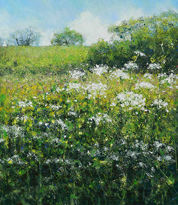 Castallack Meadow by Sarah Brown
